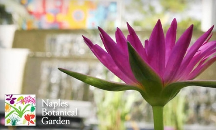 Naples Botanical Garden Pictures Gallery