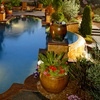 Half Off Plants and Home Décor in Granite Bay