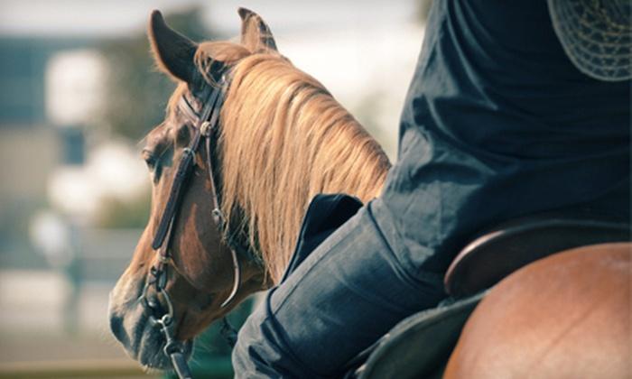 Estes Park Horseback Riding - Estes Park: One-Hour Horseback Ride for One, Two, or Four with Hot Chocolate from Estes Park Horseback Riding (Up to 54% Off)