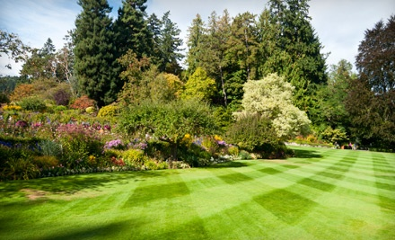 $49 for a Lawn-Care Package with Fertilizer and Weed Control from Get Greener Spaces ($100 Value)