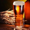 Up to 58% Off Beer-Brewing or Winemaking Class