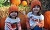 Fleitz Pumpkin Farm - Birmingham: $5 for Four Corn-Maze Admissions and Four Hayrides at Fleitz Pumpkin Farm in Oregon