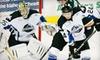 Up to 62% Off Idaho Steelheads Hockey Tickets