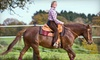 Oak Hollow Farm - Bellfontaine: One-Hour Horseback Ride or Skeet Shooting Session at Oak Hollow Farm (Up to 52% Off)