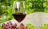 Visita delle vigne e degustazione