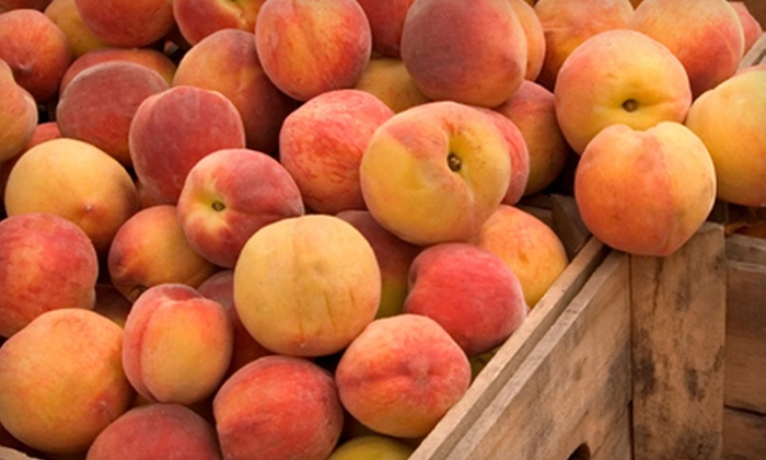 ProFarm Produce - Multiple Locations: One Box of Peaches, Nectarines, and Apricots or One Box of Apples and Pears from ProFarm Produce