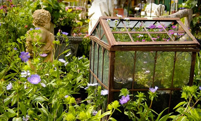Harb's Oasis - Shenandoah: $15 for $30 Worth of Plants, Pumpkins, and Garden Supplies at Harb's Oasis