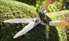 Eco Landscapes: Spring Landscape Cleaning or Mowing Package from Eco Landscapes (51% Off)