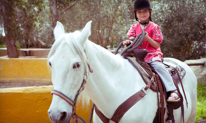 Norwood Stables - Bacon Park Area - Sandfly: Petting-Zoo Visit with Optional Pony Ride at Norwood Stables (Up to 53% Off)