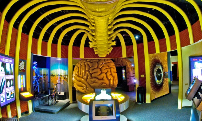 The Health Museum - South Central Houston: Admission for Two or Four, or Family Membership to The Health Museum (Up to 50% Off)