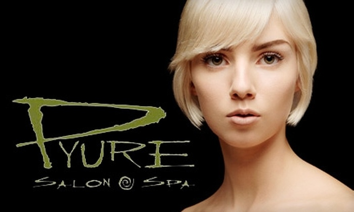 Pyure Salon & Spa - Monclova: $30 for $60 Worth of Services at Pyure Salon & Spa