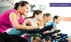 Spin Therapy: 5, 10, or 15 Indoor Cycling Classes at Spin Therapy (Up to 74% Off)