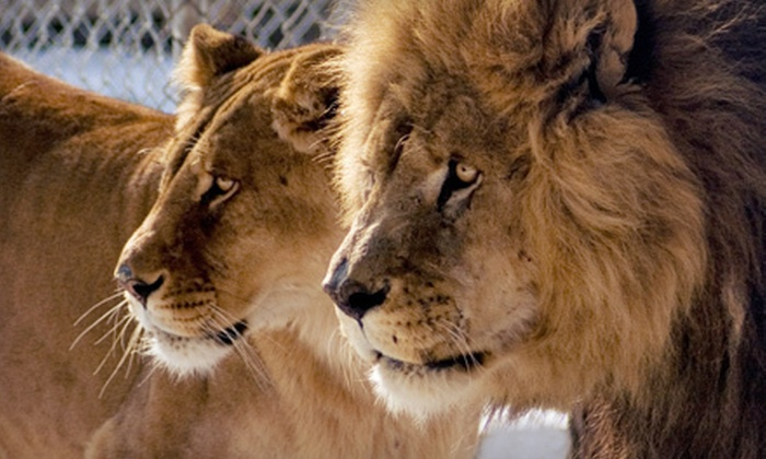 Conservators' Center - Anderson: Two-Hour Guided Public Wild-Animal Tour for One or Four at Conservators' Center in Burlington (Up to 54% Off)