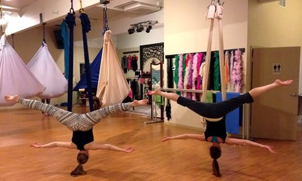 $45 for Five Pole, Aerial-Yoga, or Specialty Classes at Ophidia Studio ($75 Value)