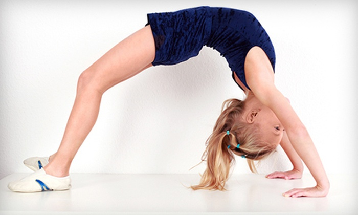 Lexington Gymnastics and Cheerleading - Lexington-Fayette: Four Kids' Lessons or Party Package at Lexington Gymnastics and Cheerleading ($56 Value)