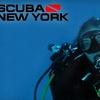 Half Off at Scuba New York