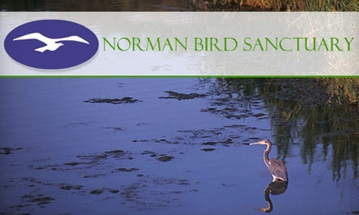 Norman Bird Sanctuary - Middletown: $27 for a Family Membership to Norman Bird Sanctuary in Middletown ($55 Value)