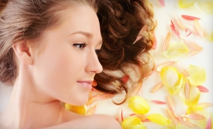 An Elegant Touch: 1 Microdermabrasion Treatment  - An Elegant Touch in Camarillo