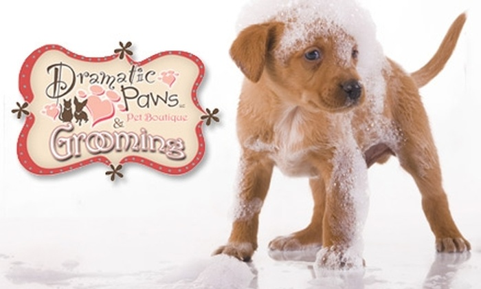 Dramatic Paws Pet Boutique - Columbus: $12 for $25 Worth of Dog-Grooming Services at Dramatic Paws Pet Boutique
