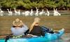 Calypso Kayaking - Manatee Cove Park  : Tandem Kayak Tour for Two or Four from Calypso Kayaking in Merritt Island