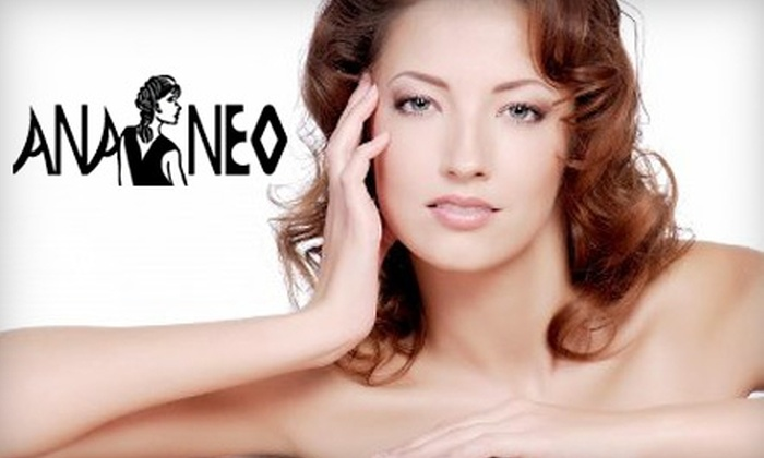Ananeo Skin Care - Detroit: $30 for a Brazilian Wax or a 45-Minute Facial at Ananeo Skin Care