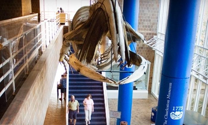 The Charleston Museum - Multiple Locations: $10 for a Three-Site Adult Ticket to The Charleston Museum (Up to $22 Value)