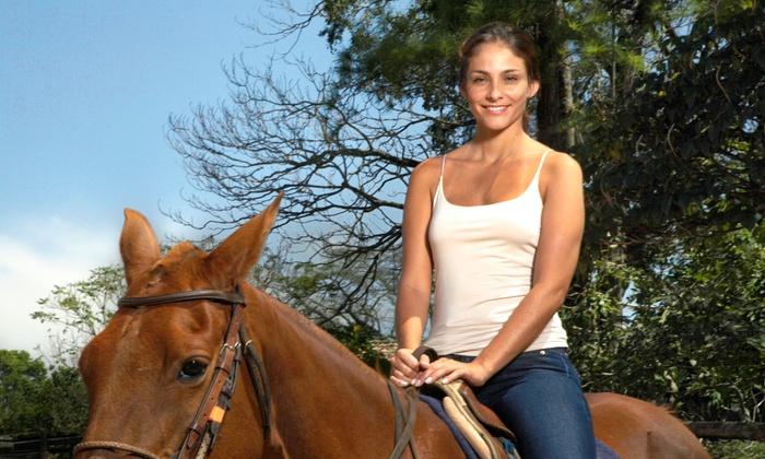 McDaniel Training Center - Willows: Horseback-Riding Lessons at McDaniel Training Center (Up to Half Off). Three Options Available.