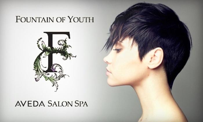 Fountain of Youth Aveda Salon Spa - Multiple Locations: Spa and Salon Services at Fountain of Youth Aveda Salon Spa. Choose from Four Options.