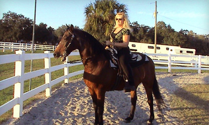 Rick Davis Stables - West Ellenton: One or Two 90-Minute Horseback-Riding Lessons from Rick Davis Stables in Palmetto (Half Off)