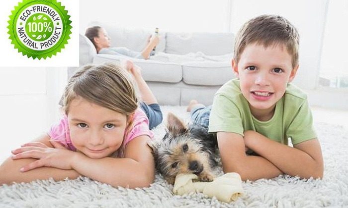 Eco Friendly Carpet Cleaning - Los Angeles: Up to 64% Off Eco Carpet Cleaning with Deodorizing Treatment at Eco Friendly Carpet Cleaning