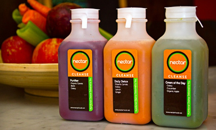 Nectar - North Decatur: One-, Three-, or Five-Day Juice Cleanse from Nectar (Half Off)