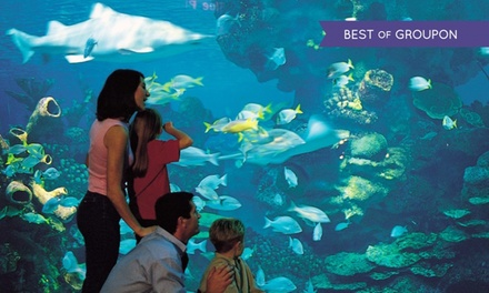 Cheshire:1 or 2 Nights or 4 with Breakfast, Aquarium Tickets and Leisure Access at Days Hotel Chester North