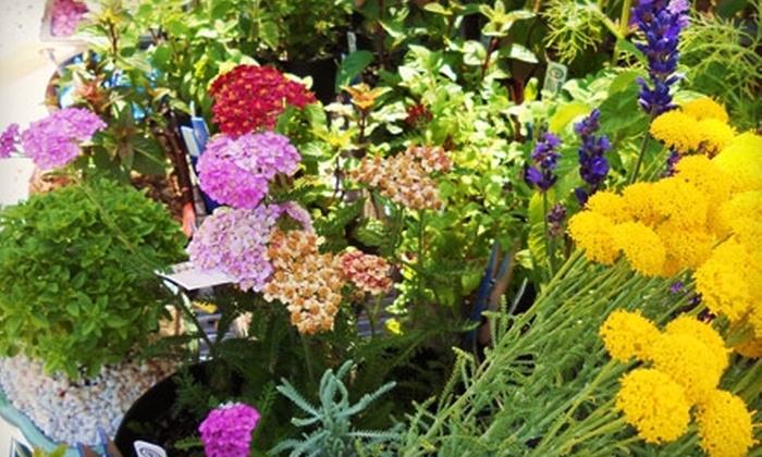 GardenShop - Carlsbad: $7 for $15 Worth of Plants, Herbs, and Gardening Supplies at GardenShop in Carlsbad