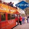 Up to Half Off City Bus Tour