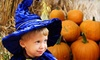 Fox Hollow Farm  - Issaquah: Fall Festival or Halloween Spooktacular Passes at Fox Hollow Farm in Issaquah. Three Options Available.