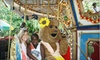 Camden Children's Garden - Cooper Grant: Admission and Ride Passes for Two, Four, or Six at Camden Children's Garden