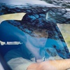 Up to 53% Off Windshield Repairs and Replacement