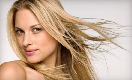 Shampoo, Haircut, Blow-Dry, and Style (up to $75 Value) - Salon Sophia in Downers Grove