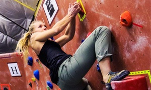 SteepWorld: Rock Climbing for One, Three, or Five, or Climbing Class for One or Four at SteepWorld (Up to 53% Off)