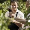 Visite et dégustation de vin