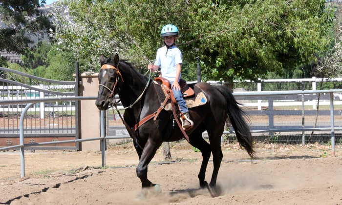 Rivera Equestrian, LLC - Multiple Locations: One-Hour Horseback-Riding Lesson at Rivera Equestrian (50% Off)