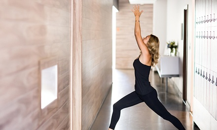 $45 for a Detox Program with Five Yoga Classes and Kombucha Shots at Yoga Tree ($120 Value)