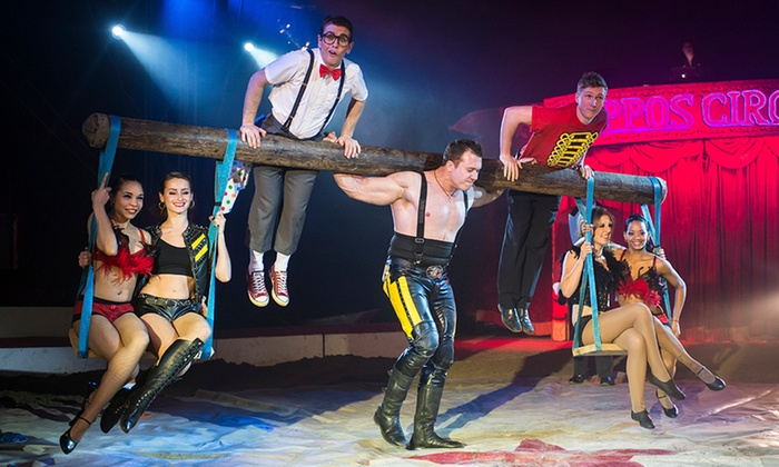 Zippos Circus - Falkirk: Zippo's Circus Ticket at Falkirk Community Stadium for £8.50 (50% Off)