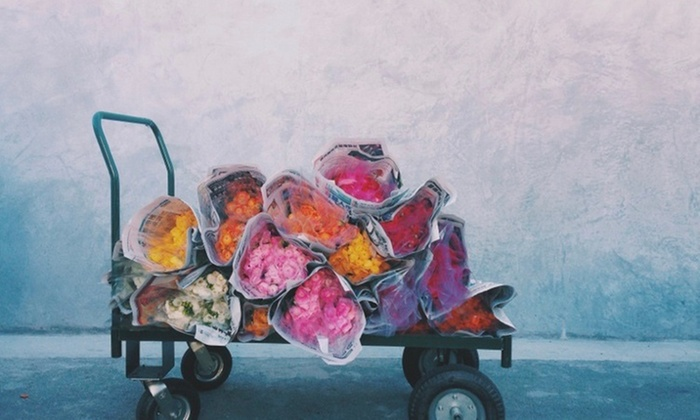 Christiana Joy - Venice: $138 for $160 Worth of Flower Picking — Christiana Joy