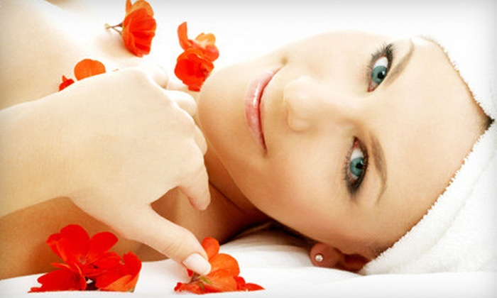 Citrus spa salon aveda in brookline ma groupon for Aveda elemental nature facial