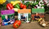 P Allen Smith: $22 for Three DVD Sets from P. Allen Smith Garden Home Collections ($44.85 Value)