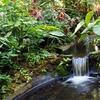 Sunken Gardens – Up to 49% Off