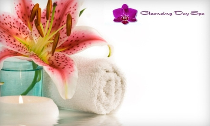 Cleansing Day Spa - Boerum Hill: $25 for Colon Hydrotherapy Session ($55 Value) or $15 for Energy Ion Foot Bath ($30 Value) at Cleansing Day Spa in Brooklyn