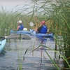 Up to Half Off Tour from 1000 Islands Kayaking