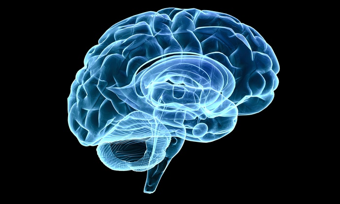 Gamma Jam Brain Works - Santa Barbara Downtown: $65 for One-Hour Brain-Mapping Session from Gamma Jam Brain Works ($500 Value)
